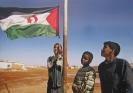 Defesa dos direitos humanos no Saara Ocidental_1