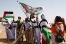Saara Ocidental: ALuta de um Povo pelo se Direito à Auto-Determinação_1